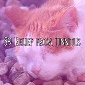 59 Relief from Tinnitus by Deep Sleep Music Academy