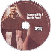 Incompatibile 2 (Grande Prova!) von Various Artists