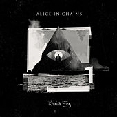 Rainier Fog de Alice in Chains