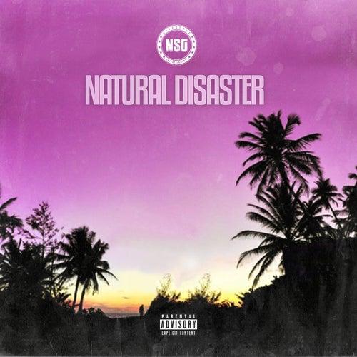 Natural Disaster de Nsg