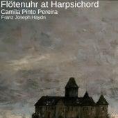 Flötenuhr at Harpsichord by Camila Pinto Pereira
