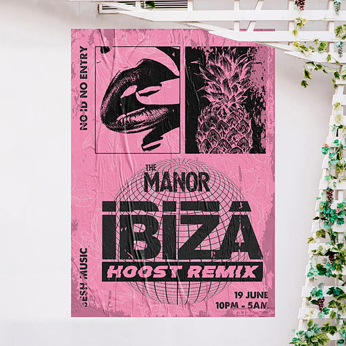 Ibiza (Hoost Remix) de The Manor