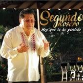 Hoy Que Te He Perdido by Segundo Rosero