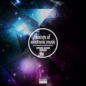 Secrets of Electronic Music - Future House Edition #4 de Various Artists