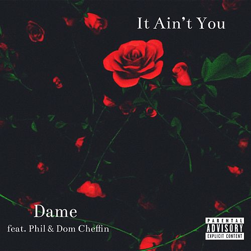 It Ain't You by Dame