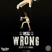 U Know U Wrong (feat. Hubba) von Sleepy D