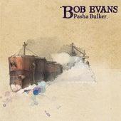 Pasha Bulker (Where Did I Go Wrong?) by Bob Evans
