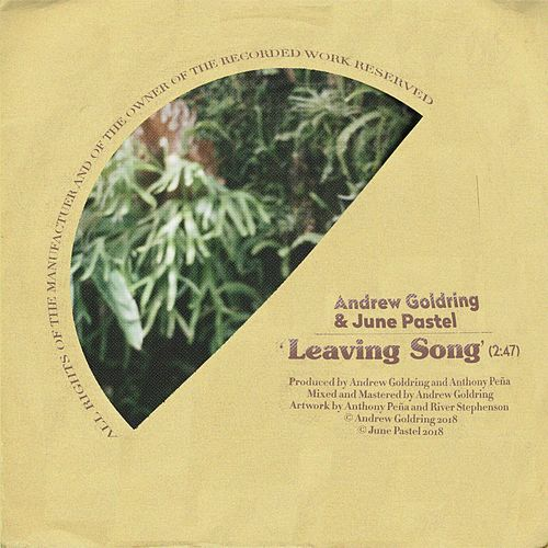 Leaving Song by Andrew Goldring