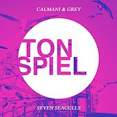 Seven Seagulls by Calmani & Grey
