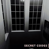 Secret Codes by Pixie Lavender
