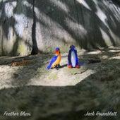 Feather Blues by Jack Rosenblatt