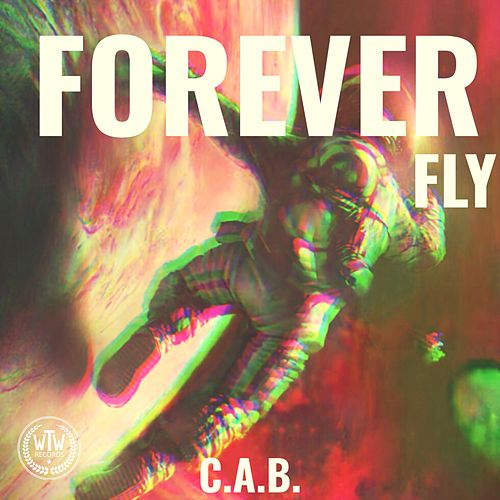 Forever Fly by The Cab