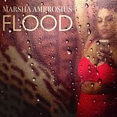 Flood by Marsha Ambrosius