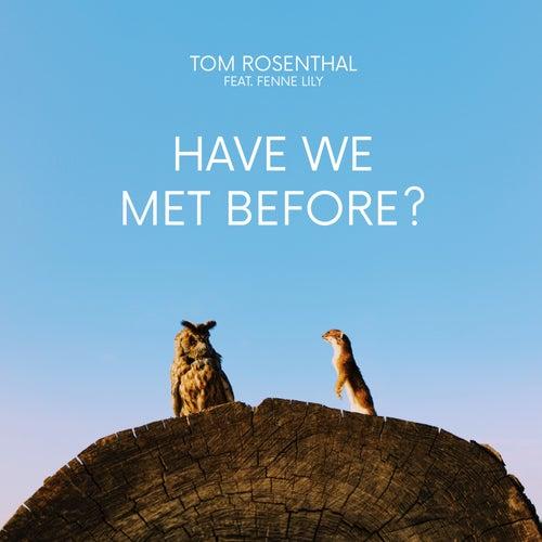 Have We Met Before? von Tom Rosenthal