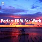 Perfect EDM For Work by Various Artists