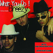 Breezy - Single by Latino Velvet