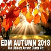 EDM Autumn 2018 - The Ultimate Autumn Charts Mix (The Best EDM, Trap & Dirty House) von Various Artists
