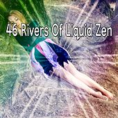 46 Rivers Of Liquid Zen de White Noise Babies