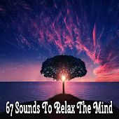 67 Sounds To Relax The Mind de Massage Tribe