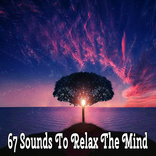 67 Sounds To Relax The Mind by Massage Tribe