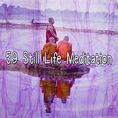 59 Still Life Meditation von Massage Therapy Music