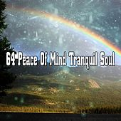 64 Peace Of Mind Tranquil Soul by Classical Study Music (1)