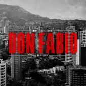 Medellin II: Don Fabio by SmooVth