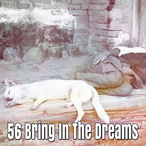 56 Bring In The Dreams by Lullaby Land