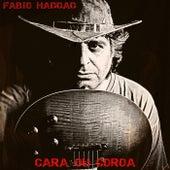 Cara ou Coroa de Fabio Haddad