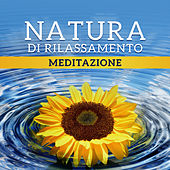 Natura di rilassamento (Meditazione – Calma, Dormire, Equilibrio dei chakra, Yoga zen) de Various Artists