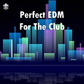 Perfect EDM For The Club van Various Artists