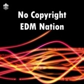 No Copyright EDM Nation de Various Artists