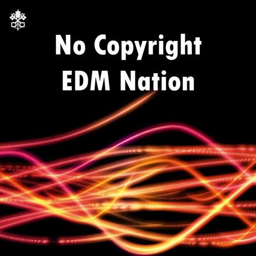 No Copyright EDM Nation de Various Artists