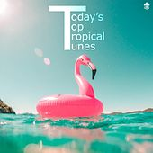 Today's Top Tropical Tunes by Various Artists