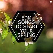 EDM Songs To Start Your Spring de Various Artists