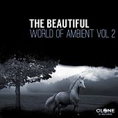 The Beautiful World of Ambient, Vol. 2 by Various Artists