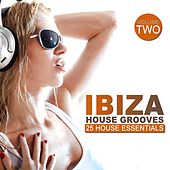 Ibiza House Grooves, Vol. 2 by Various Artists
