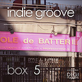 Indie Groove Box, Vol. 5 von Various Artists