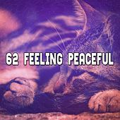 62 Feeling Peaceful by Ocean Sounds Collection (1)