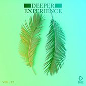 Deeper Experience, Vol. 12 by Various Artists