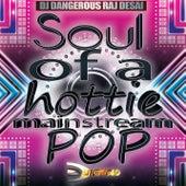 Soul of a Hottie (Mainstream Pop) de DJ Dangerous Raj Desai