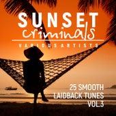 Sunset Criminals, Vol. 3 (25 Smooth Laidback Tunes) - EP von Various Artists