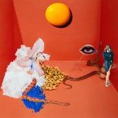 Desastre Solar de Laura Lavieri