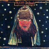 Tribal by Dr. John