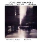 Constant Stranger de Richard Sears
