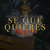 Sé Que Quieres (feat. Brytiago, Jon Z & Almighty) (Remix) by De La Ghetto