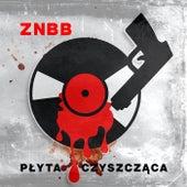 Plyta Czyszczaca by Z.N.B.B