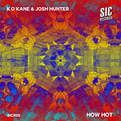 How Hot by Kokane