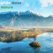 White Noise Nature 2018 de BodyHI