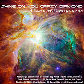 Shine On You Crazy Diamond - A Tribute To Pink Floyd's Greatest Hits de Various Artists